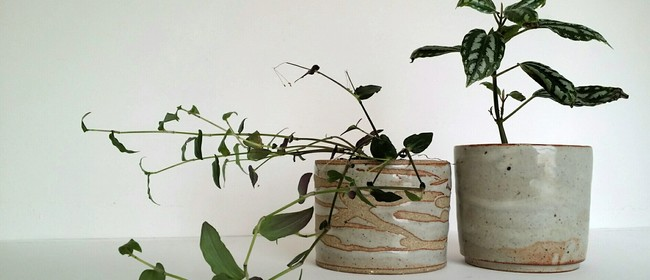 Make A Planter Pot - 1-Day Workshop w Siriporn Falcon-Grey