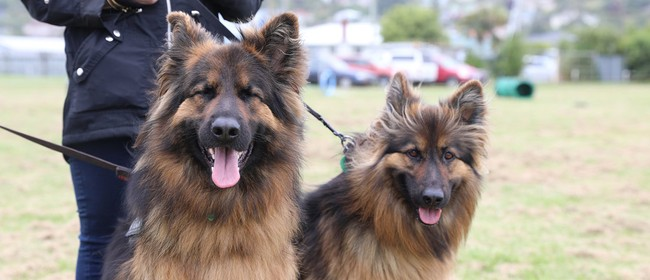 Oamaru Dog Expo