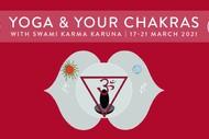 Yoga & Your Chakras