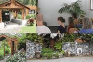 Silent Insight Awareness Meditation(IAM) Retreat - 3 day