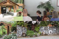 Silent Insight Awareness Meditation(IAM) Retreat - 4 day
