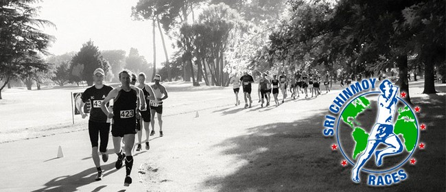 Cherry Blossom Marathon, Half Marathon,10 km & Kids 2.5 km