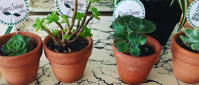 Plant Swap in Auckland CBD