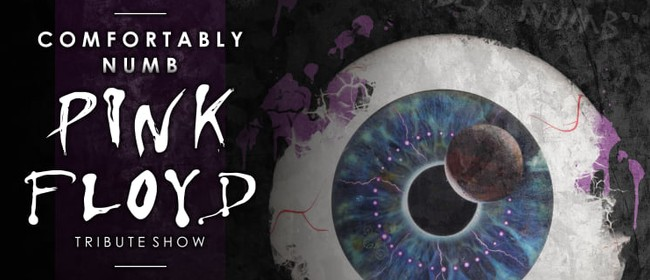 Pink Floyd Tribute: CANCELLED