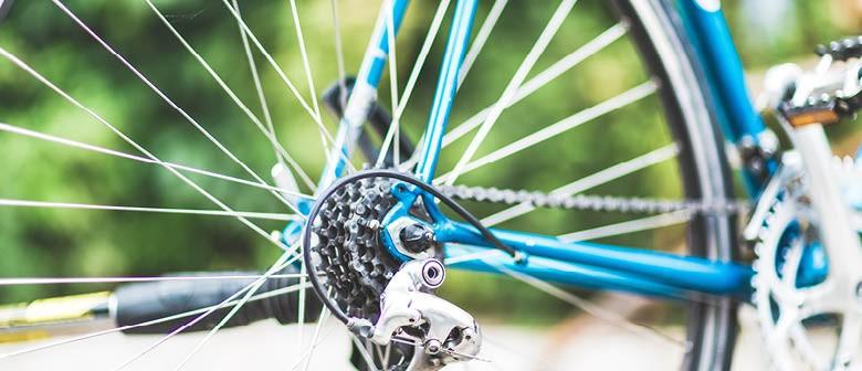Bike Month 2021 - Pukehinahina Historic Ride - Posponed