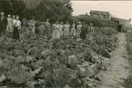 Heritage Talk - Wainuiomata in World War 2