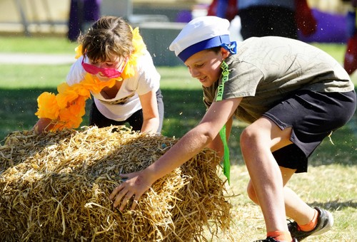 Rural Games Kids and Country Come to Feilding Farmers Market
