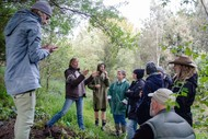 Design Your Own Food Forest Workshop