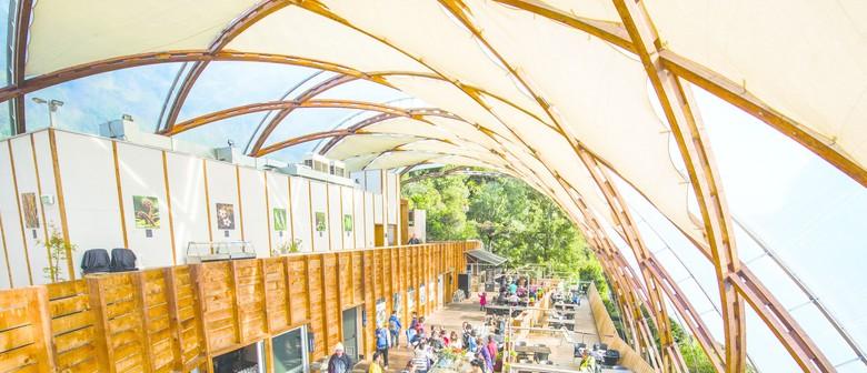 Waitomo Arts Month