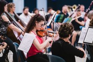 Hawke's Bay Orchestra presents 'Classics for Koha'