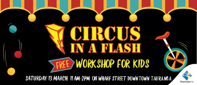 Circus Workshops with Circus in a Flash