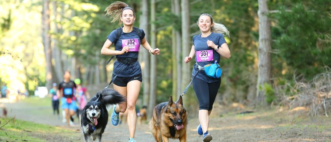 4 Paws Marathon 2021: CANCELLED