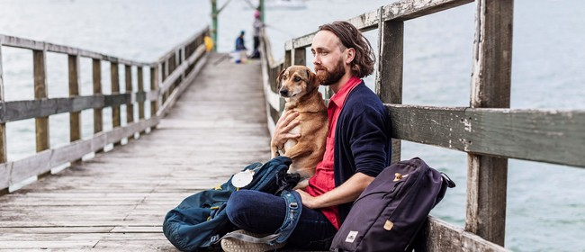 A Traveller's Guide to Turkish Dogs