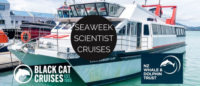 Seaweek Scientist Cruise with the NZ Whale and Dolphin Trust