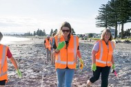 South Brighton Litter Intelligence Survey and Audit