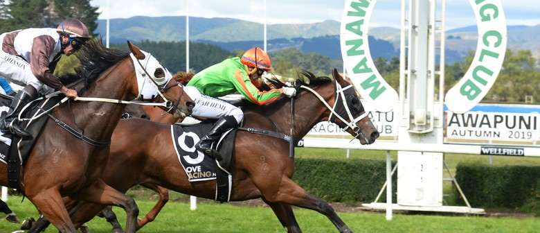 Japac Homes Breeders Stakes Raceday