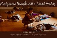 Biodynamic Breathwork - 7 week series