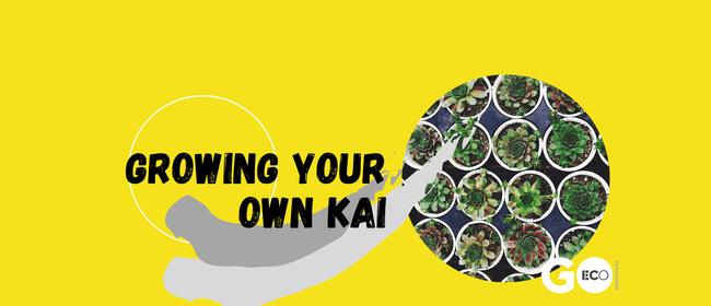 Growing Your Own Kai - Propagating