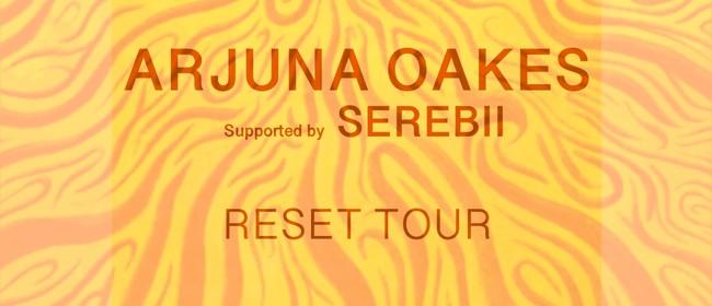 Arjuna Oakes and Serebii - Reset Tour