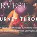 Journey Through Food