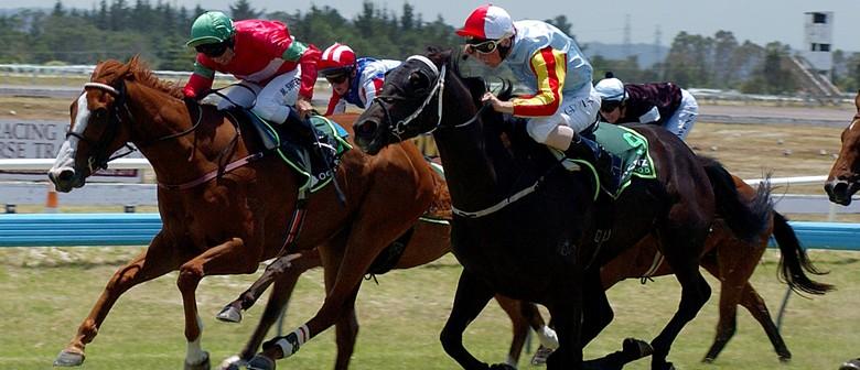 Ruakaka Races