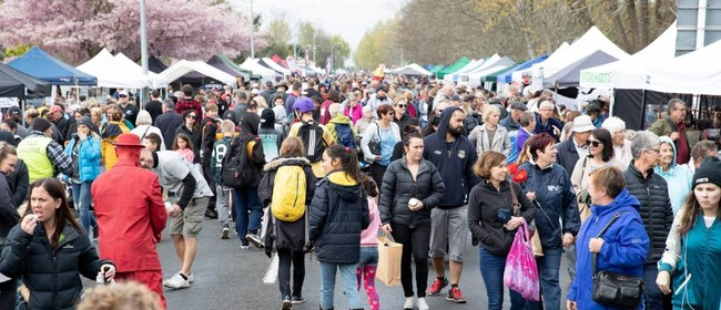 Pirongia Craft Day 2021: CANCELLED