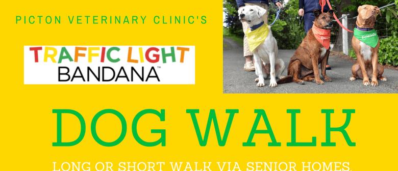 Traffic Light Bandana Dog Walk