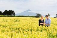 Tapuae Roa and Taranaki 2050 Roadshow