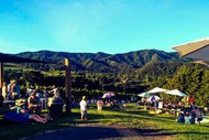Image for event: Music In the Vines: CANCELLED