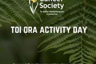 Toi Ora Activity Session