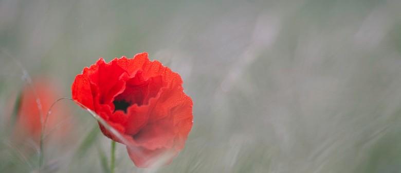 Anzac Day Service - Picton