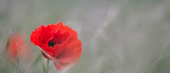 Anzac Day Service - Blenheim