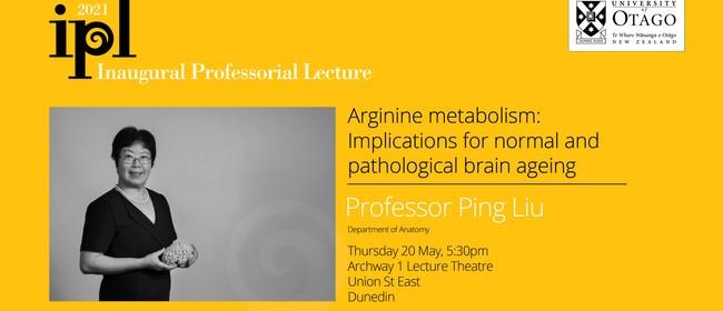 Inaugural Professorial Lecture - Professor Ping Liu