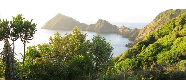 Ecological Restoration of Puangiangi