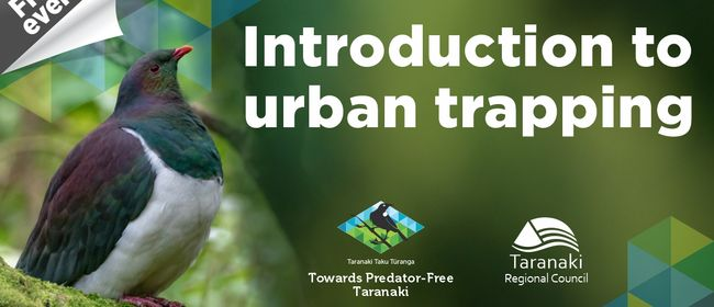 Introduction to urban trapping