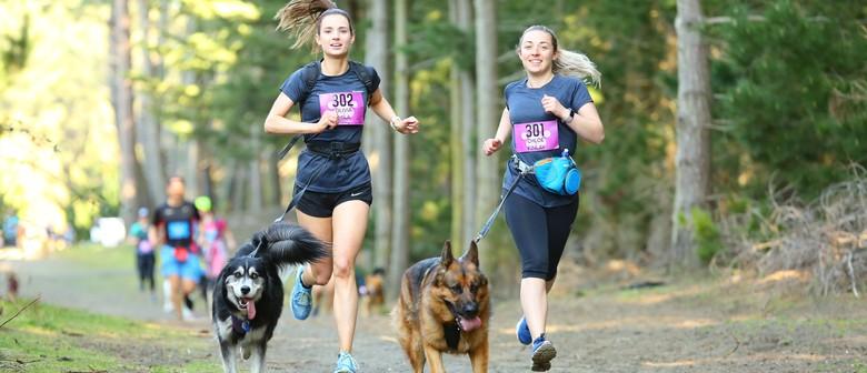 4 Paws Marathon 2021