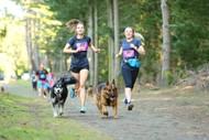 Image for event: 4 Paws Marathon 2021