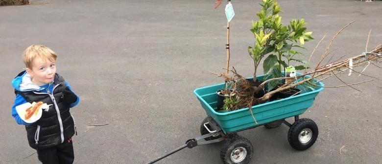 Waikato Tree Crops Annual Tree and Plant Sale