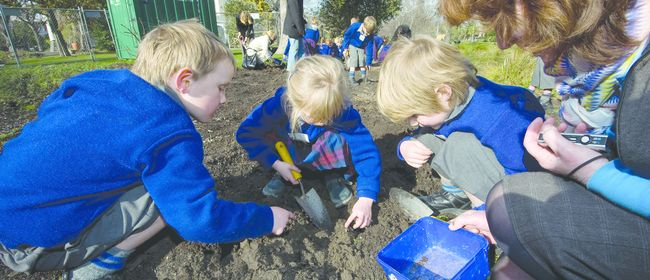 Building a Mini Worm Farm