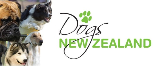 Marlborough, West Coast & Nelson Ladies Champion Dog Show