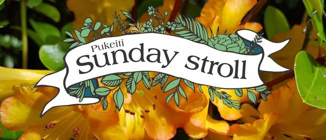 Pukeiti Sunday Stroll