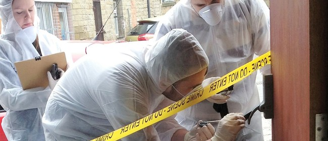 A Real CSI Experience
