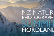 NZ Nature Photography Summit