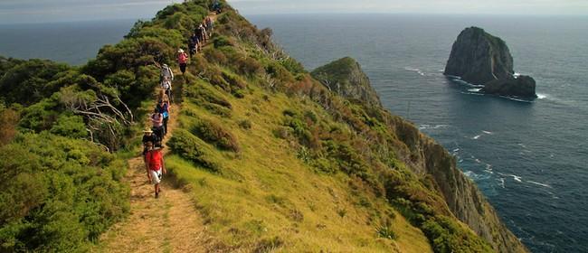 Walk 15 – Rakaumangmanga – Cape Brett Overnight Walk: CANCELLED