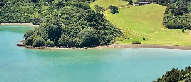 Walk 5 – Paroa Bay Vineyard Sunday Lunch: CANCELLED