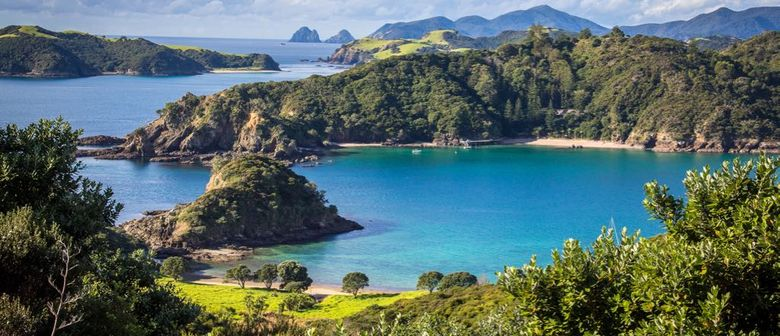 Walk 10 – Moturua Island Song - Travelling by Launch