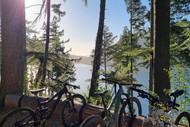 Steamy Bike Ride - Whakarewarewa Forest Loop & Te Ara Ahi