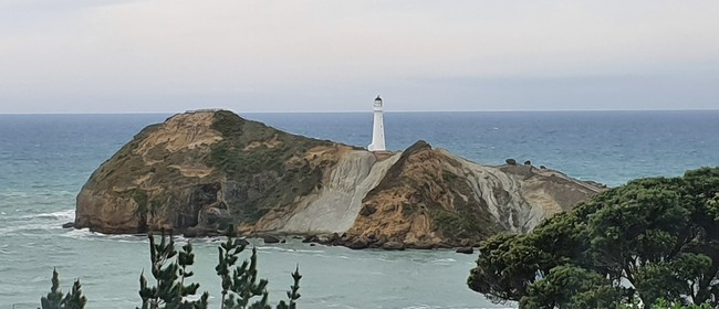 Planting Day for Castlepoint Restoration Project