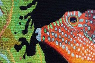 Woven Tapestry – Ancient Art of NZ