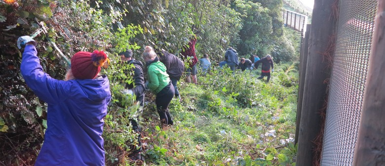 Get down and dirty for National Volunteer Week